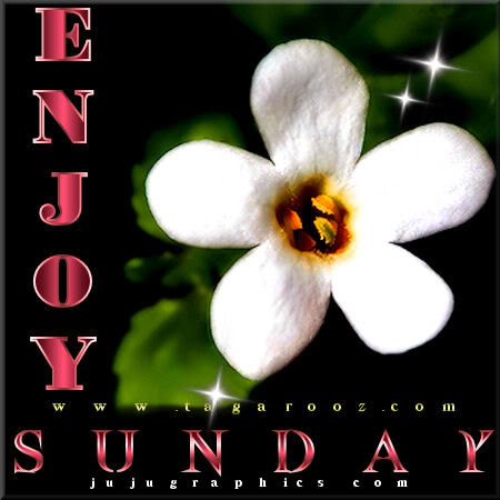 Enjoy Sunday 24