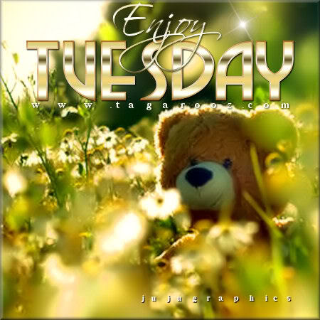 Enjoy Tuesday 24