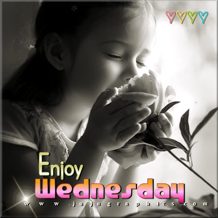 Enjoy Wednesday 7