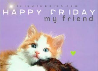 Funny friday comments archives page 31 of 40 graphics quotes happy friday my friend m4hsunfo