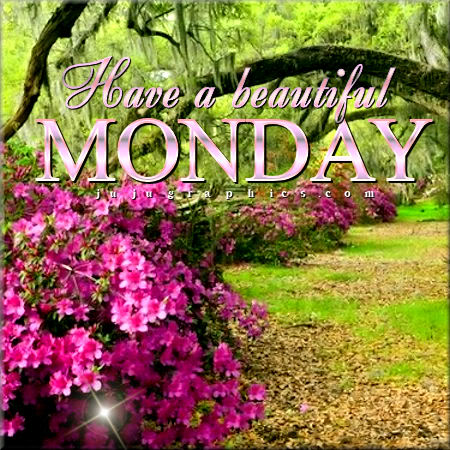Have a beautiful Monday 1