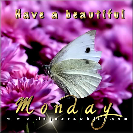 Have a beautiful Monday 11