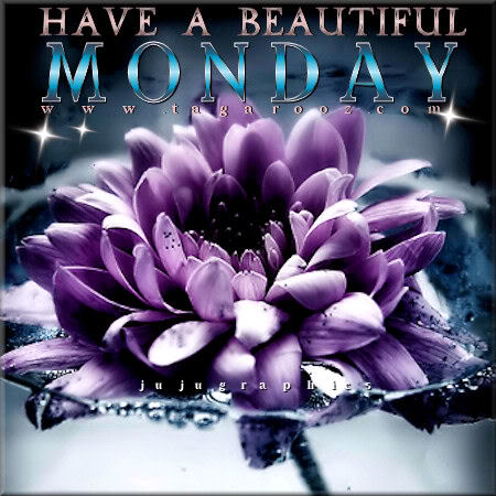 Have a beautiful Monday 16