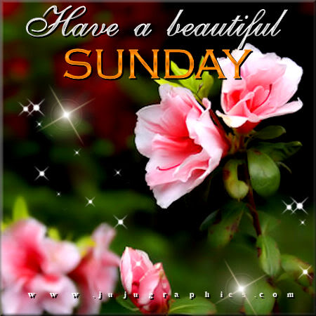 Have a beautiful Sunday 11