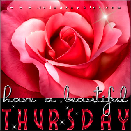 Have a beautiful Thursday 1