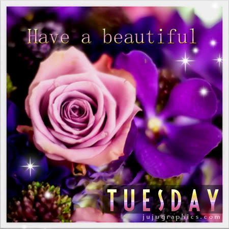Have a beautiful Tuesday 12