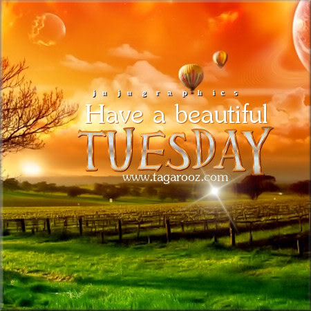 Have a beautiful Tuesday 16