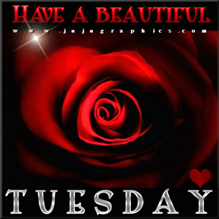 Have a beautiful Tuesday 18