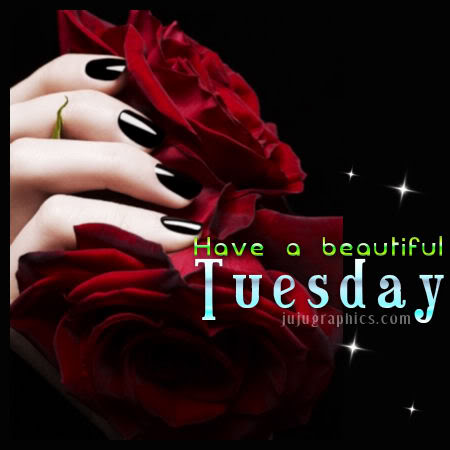 Have a beautiful Tuesday 4