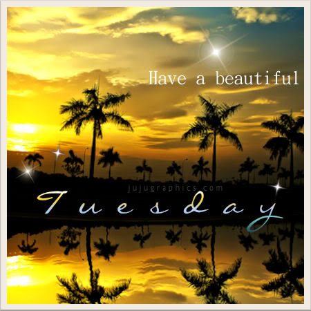Have a beautiful Tuesday 6