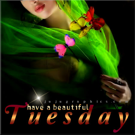 Have a beautiful Tuesday 8