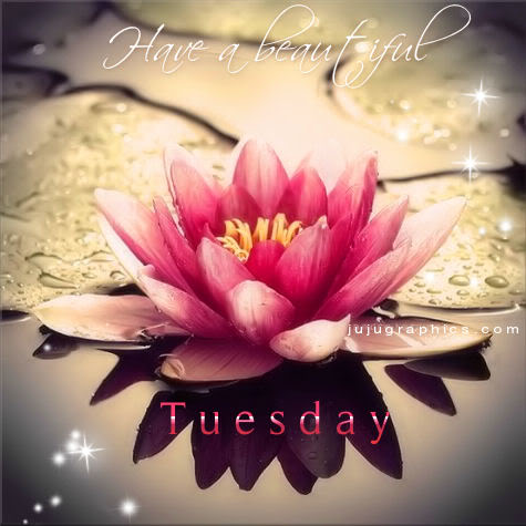 Have a beautiful Tuesd...