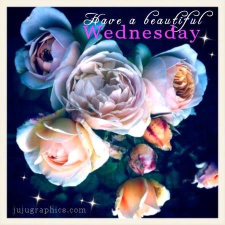 Have a beautiful Wednesday 4