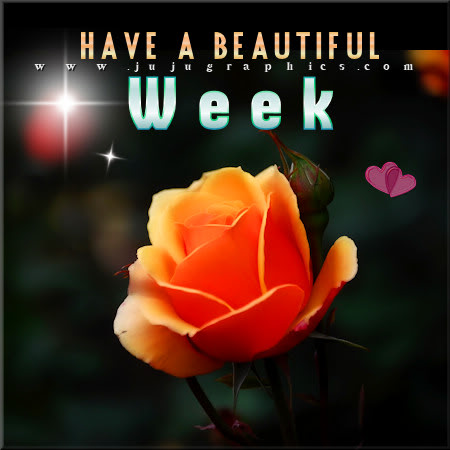 Have a beautiful week 5