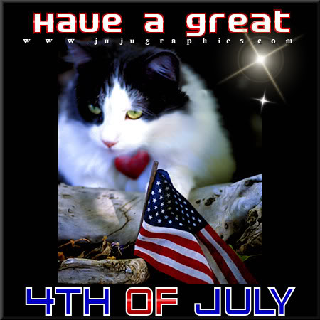 Have a great 4th of July 10