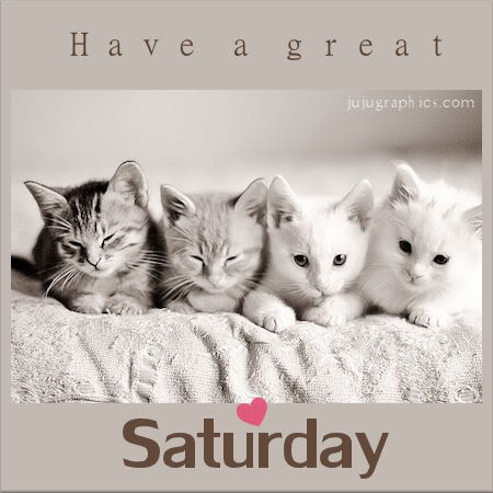 Have a great Saturday 2