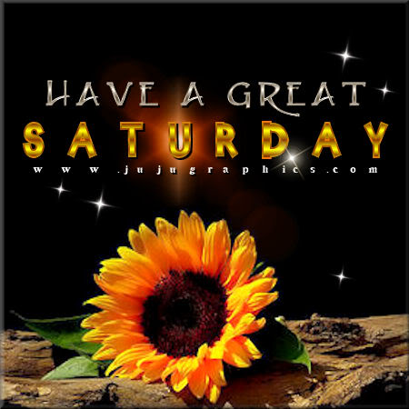 Have a great Saturday 91