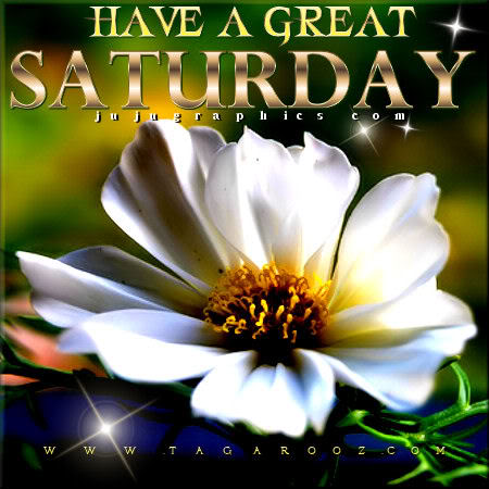 Have a great Saturday 95