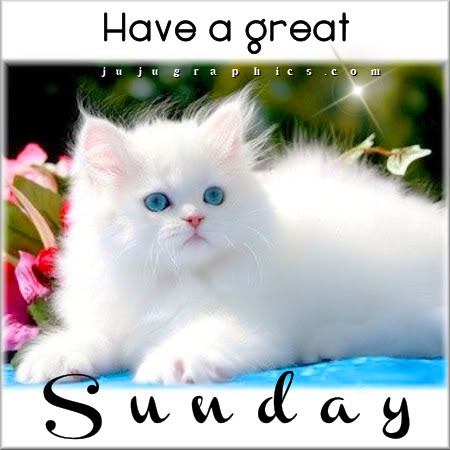 Image result for have a great sunday