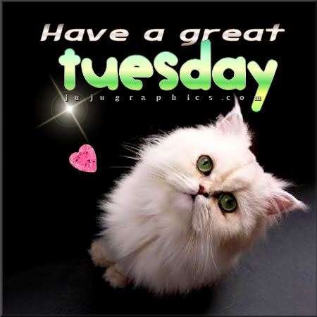 Have a great Tuesday 23 - Graphics, quotes, comments ...