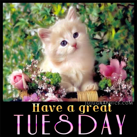 Have a great Tuesday 24