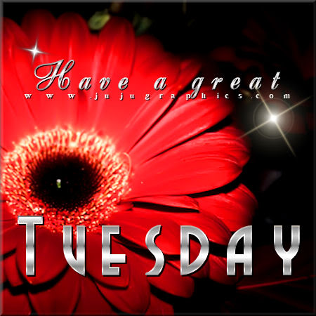 Have a great Tuesday 64