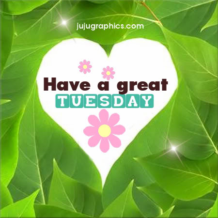 Have a great Tuesday 7