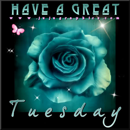 Have a great Tuesday 78