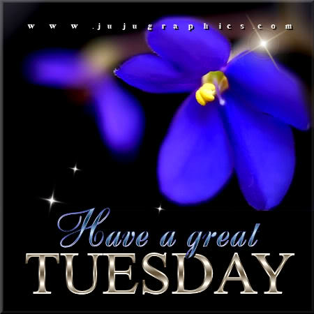 Have a great Tuesday 85