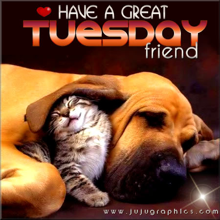 Have a great Tuesday friend 2