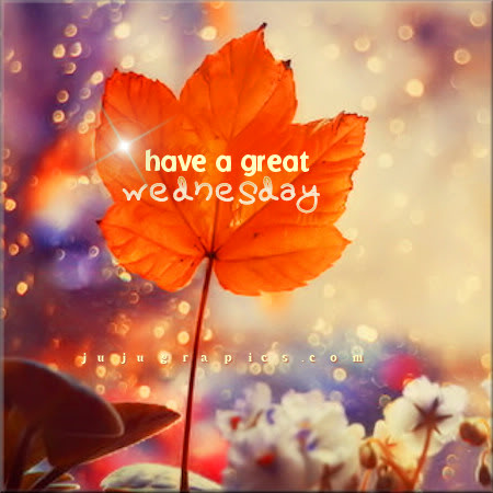 Have a great Wednesday 24
