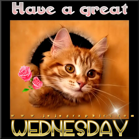 Have a great Wednesday 65