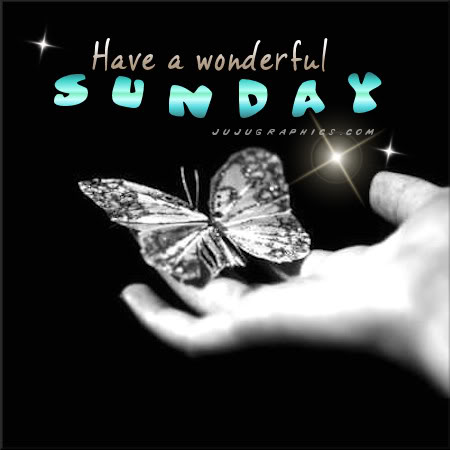 Have a wonderful Sunday 12