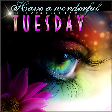 Have a wonderful Tuesday 11