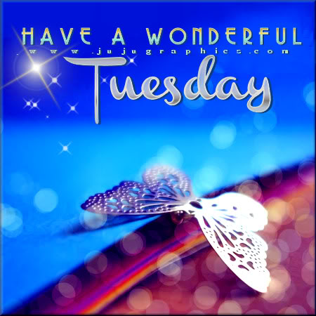 Have a wonderful Tuesday 13