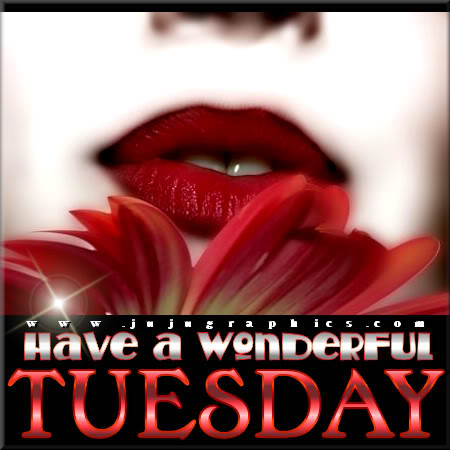 Have a wonderful Tuesday 5