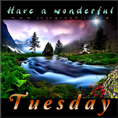 Have a wonderful Tuesday 6