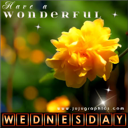 Have a wonderful Wednesday 15
