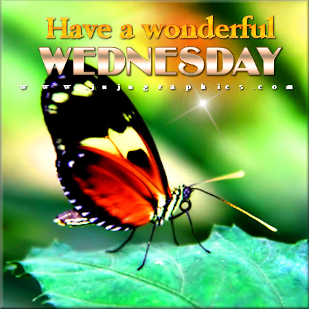 Have a wonderful Wednesday 5 1