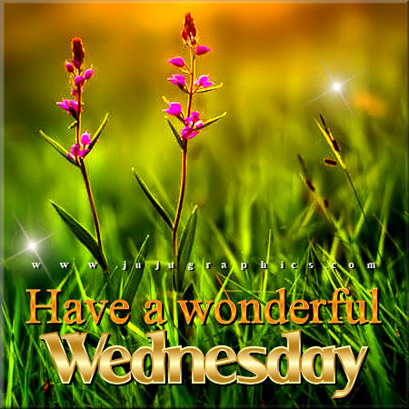 Have a wonderful Wednesday 8 1