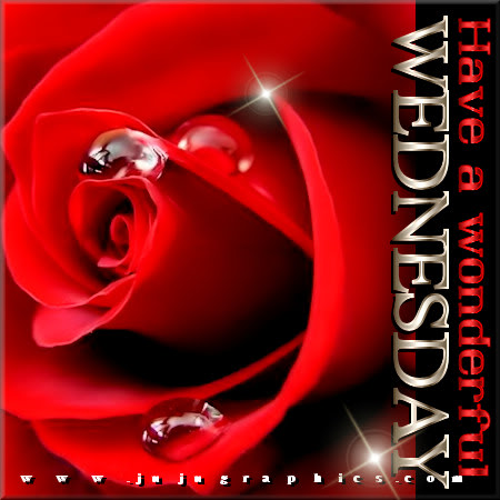Have a wonderful Wednesday 8