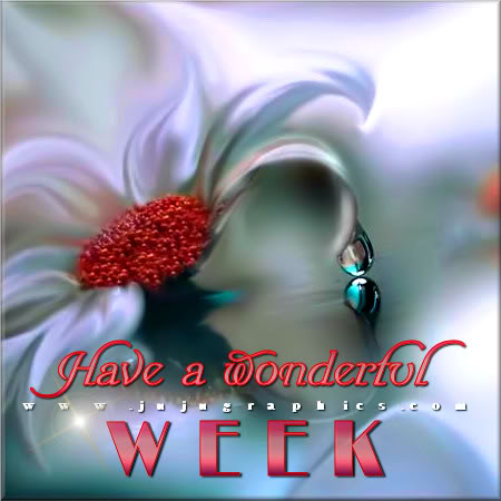 Thanksgiving Quotes 2017 >> Have a wonderful week 19 - Graphics, quotes, comments, images & greetings for Myspace, Facebook ...