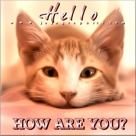 Hello how are you 4