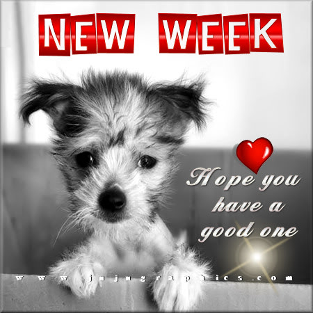 New week hope you have a good one