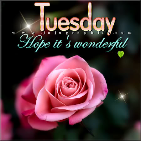 Tuesday hope its wonderful 2 - Graphics, quotes, comments