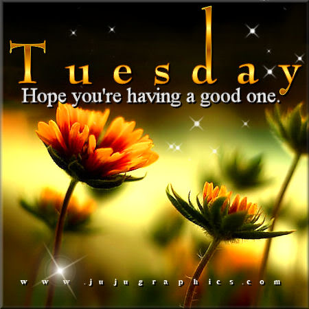 Tuesday hope youre having a good one