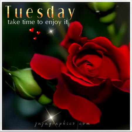 Tuesday take time to enjoy it
