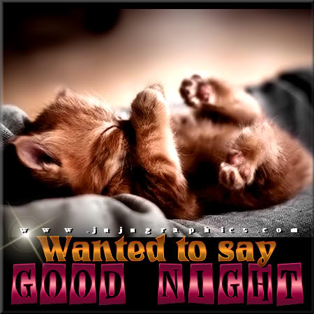 Wanted to say good night