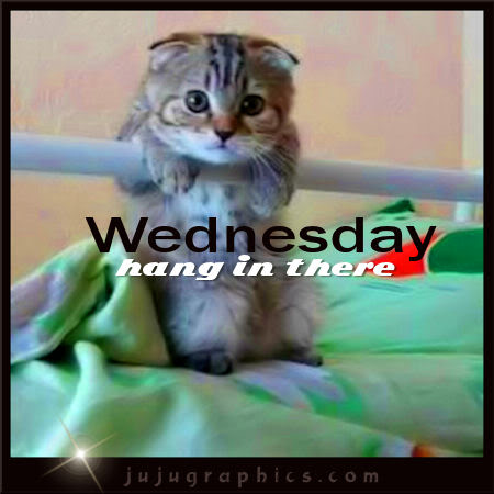Wednesday Hang In There Graphics Quotes Comments Images Amp Greetings For Myspace Facebook
