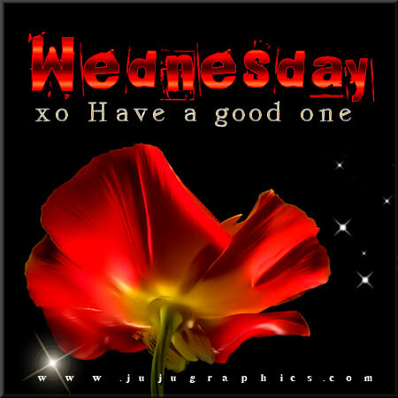 Wednesday have a good one 3